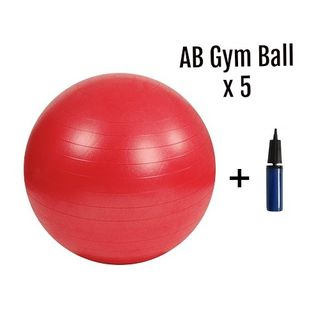 AB Gym Ball PAKET Ø 55 cm